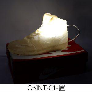 OKINT01