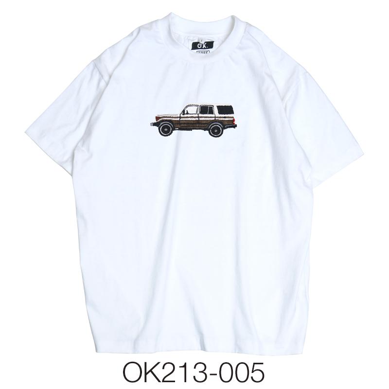 ct_OK213-005